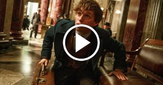 """""""Animales fantásticos y dónde encontrarlos"""": el debut de J.K. Rowling como guionista"""