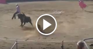 Un toro ataca a dos antitaurinos que saltaron al ruedo en Francia