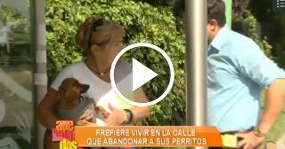 Mujer residente en Miami prefiere ser homeless, antes que abandonar sus perritos