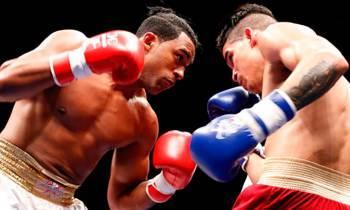 Domadores de Cuba y Heroicos de Colombia irán el viernes a duelo de invictos en Serie Mundial de Boxeo