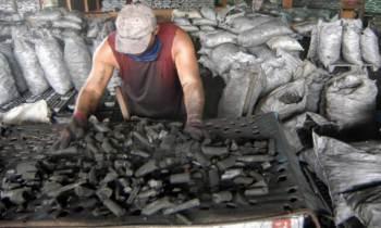 Cuba quiere aumentar la producción de carbón vegetal para exportación