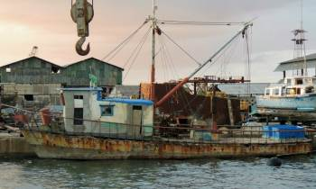 La FAO estudia el impacto del sector pesquero en Cuba