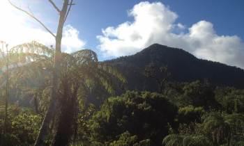 ¿Cómo subir el Pico Turquino, punto más alto de Cuba? (+ Fotos)