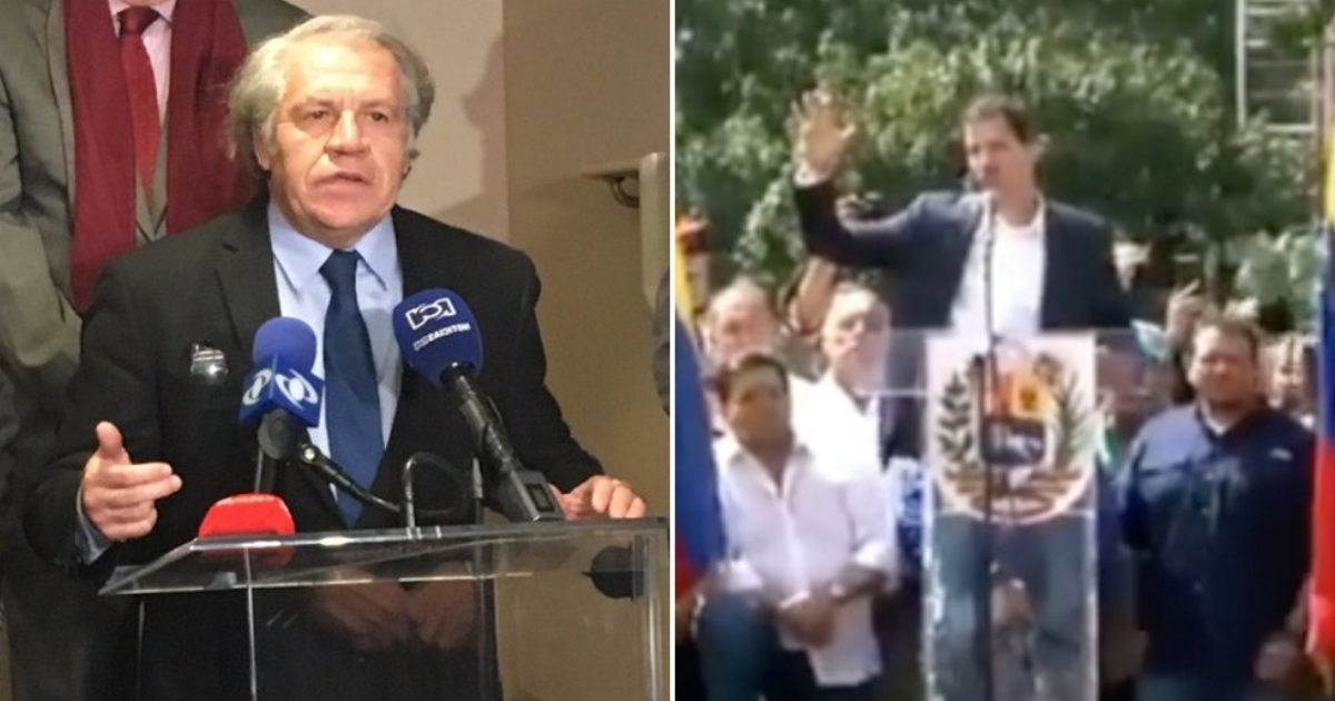 Resultado de imagem para La OEA se prepara para reconocer a Juan Guaidó
