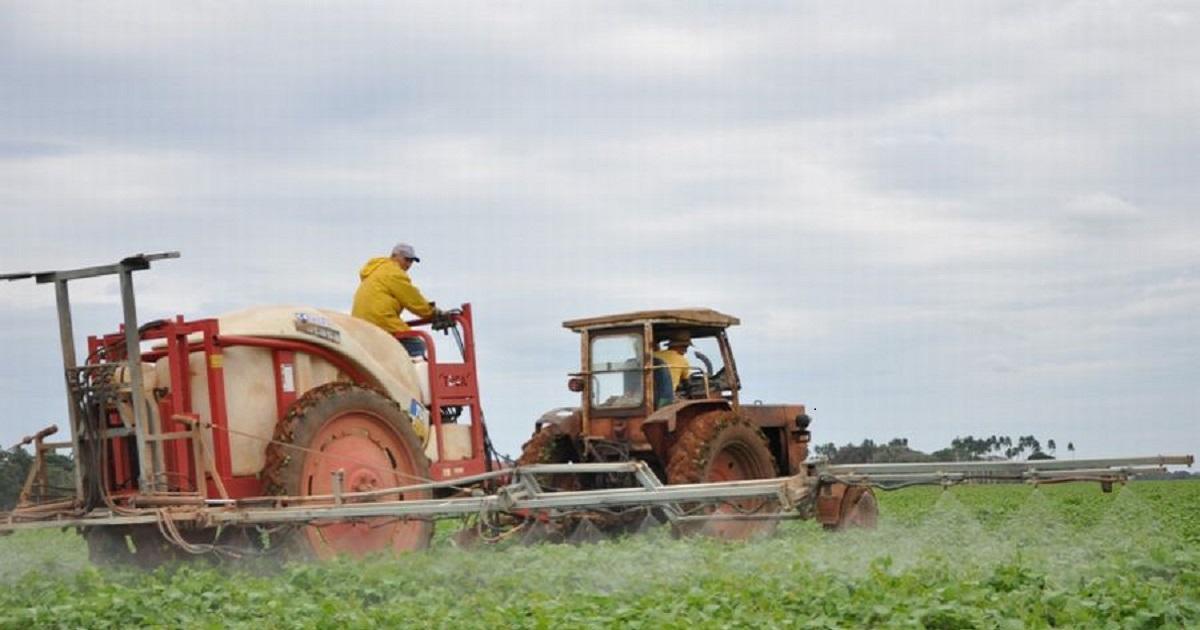 Ausbringung von Pflanzenschutzmittel in Kuba (symbolbild) | Bildquelle: https://www.cibercuba.com/noticias/2020-07-31-u1-e199894-s27061-cuba-producira-solo-10-ciento-demanda-interna-frijoles-2020 © Periódico Escambray | Bilder sind in der Regel urheberrechtlich geschützt